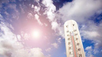 Photo of Най-топлият януари от 141 години насам