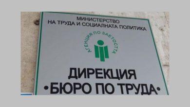 Photo of 252 безработни лица са започнали работа в област Ловеч