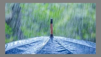Photo of Очакват се  интензивни валежи