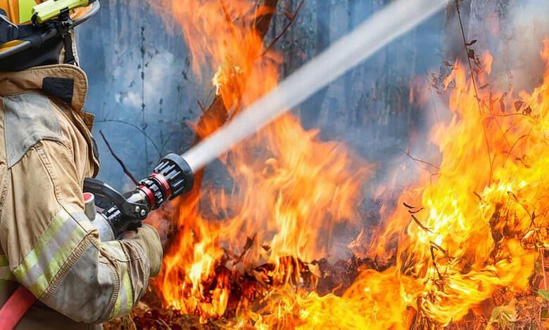 Пожар в природата