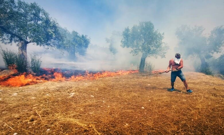 Опазване на земеделските земи и реколтата от пожари през лятото